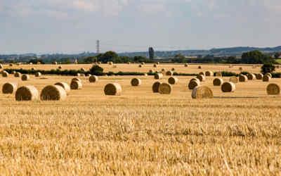 Élection provinciale 2018: le dossier de la fiscalité foncière agricole demeure la priorité des agriculteurs de la Montérégie!