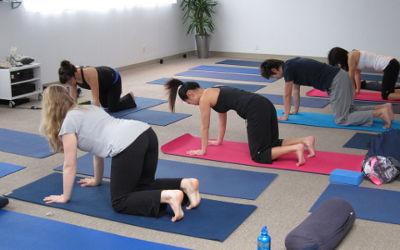Calixa-Lavallée: Hatha Yoga et zumba !