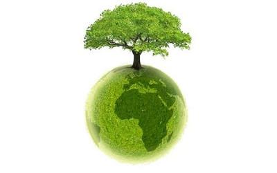Saint-Antoine-sur-Richelieu: distribution d'arbres et d'arbustes gratuite avec preuve de résidence