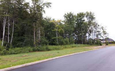 Consultation citoyenne: le parc Amable-Marion, à vous la parole!