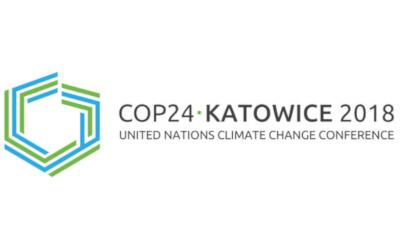 Prendre le problème climatique à la racine: 5 leviers concrets pour bâtir des milieux de vie prospères et résilients