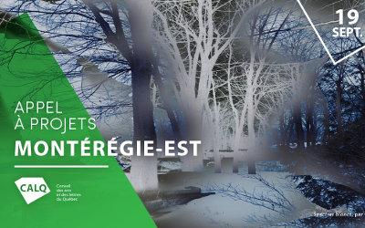 Montérégie-Est: appel à projets pour les artistes, écrivains et organismes artistiques