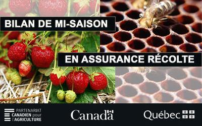 Région de la Montérégie: bilan de mi-saison 2019 en assurance récolte